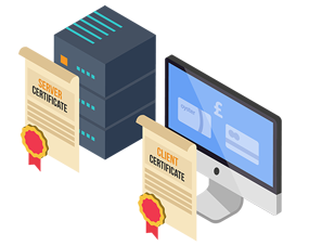 Client Certificates vs. Server Certificates What's the Difference?